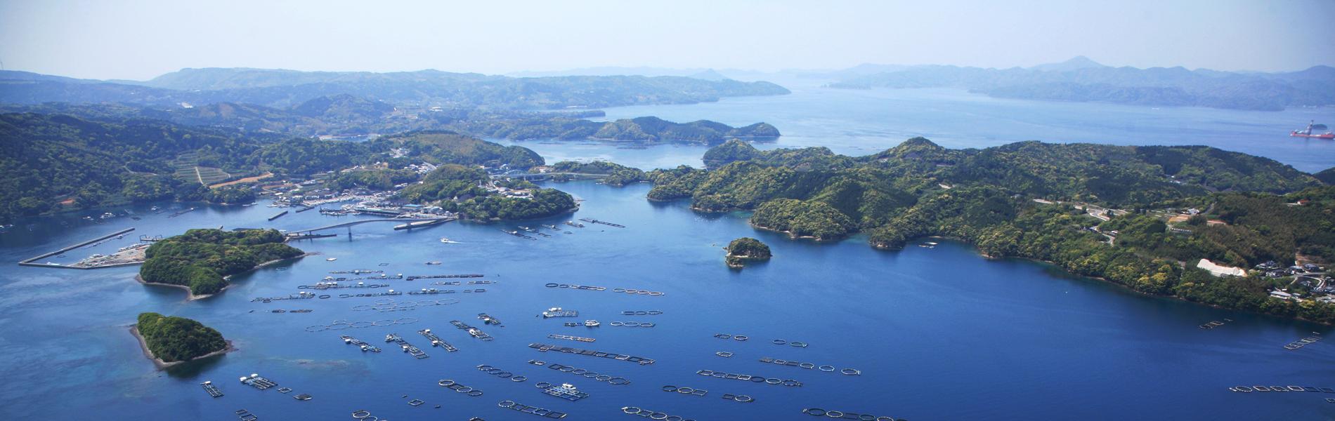 漁業者の所得向上を実現地域活性化につなげたい